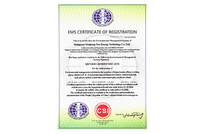 ECELEN EMS CERTIFICATE OF REGISTRATION